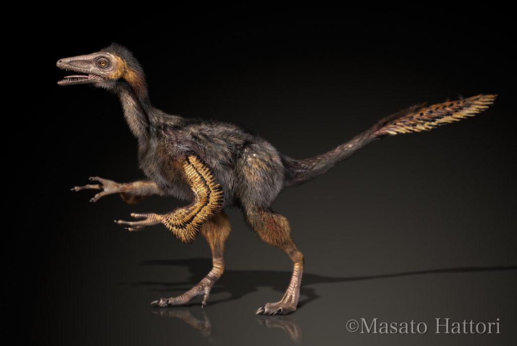 Yixianosaurio